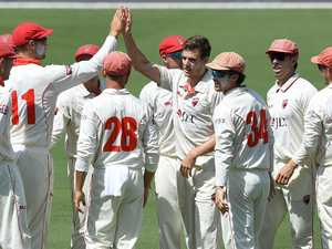 Lehmann holds Redbacks' hopes of Shield miracle