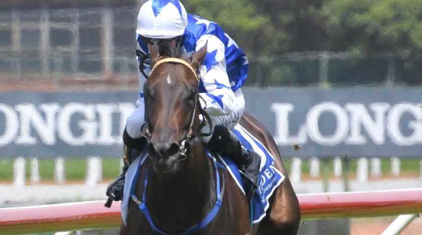 Villami scored an impressive debut win at Rosehill Gardens last month. Picture: AAP