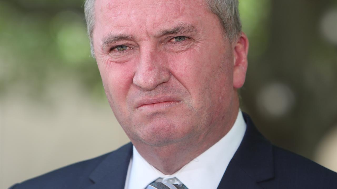 Barnaby Joyce. Picture: Kym Smith