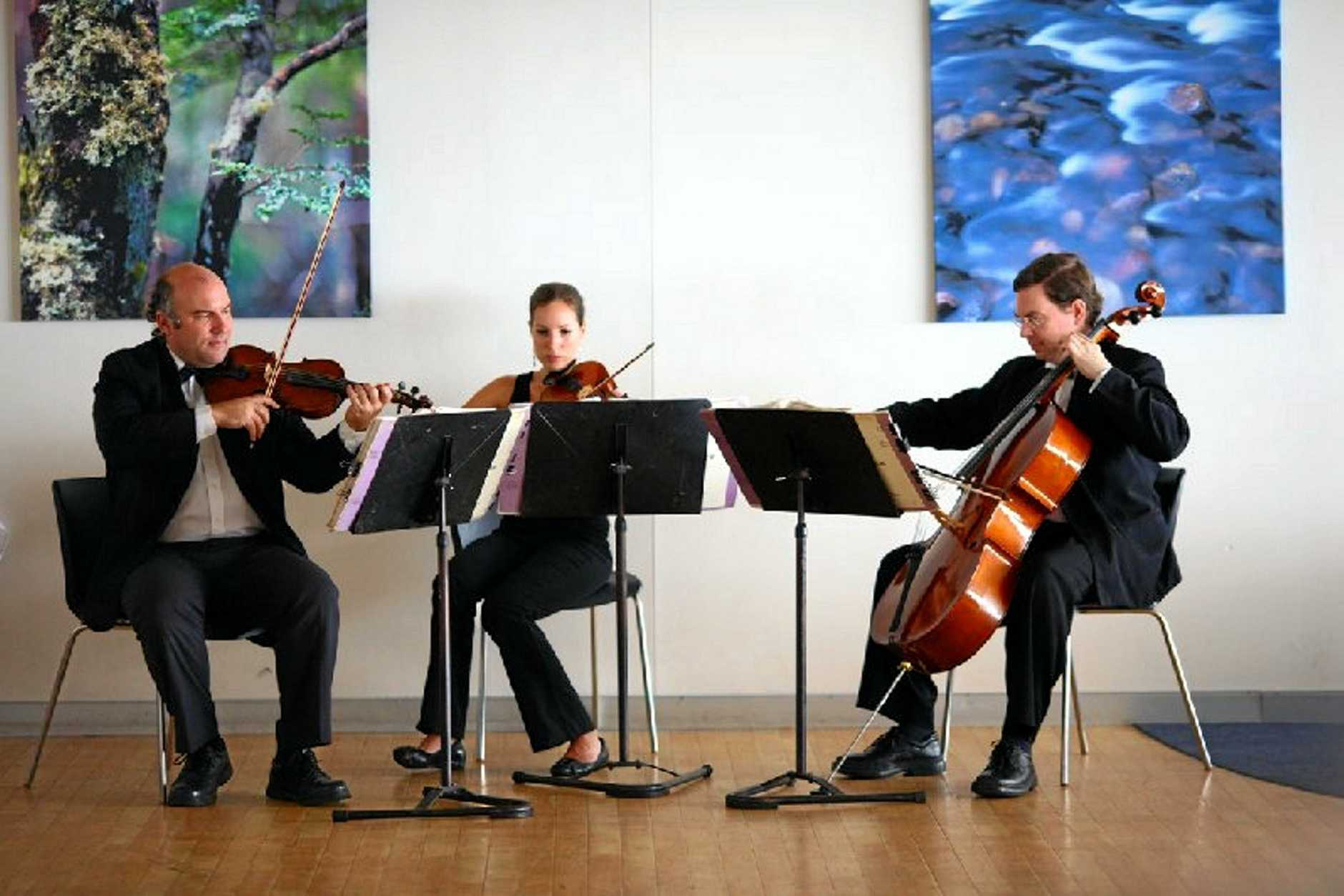 Offenbach Strings will be performing this Sunday at Jimbour House.  Photo: Contributed / Dalby Herald