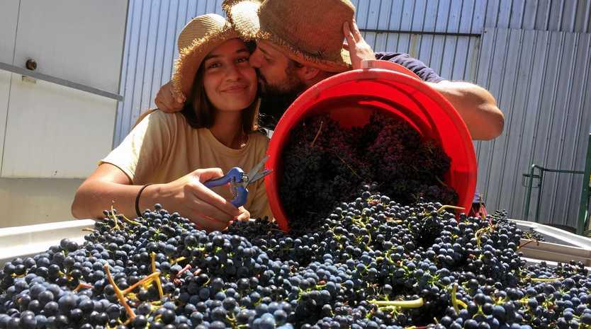 LOVEBIRDS: Afef Idoudi and Thomas Relizani are honeymooning in Ballandean.
