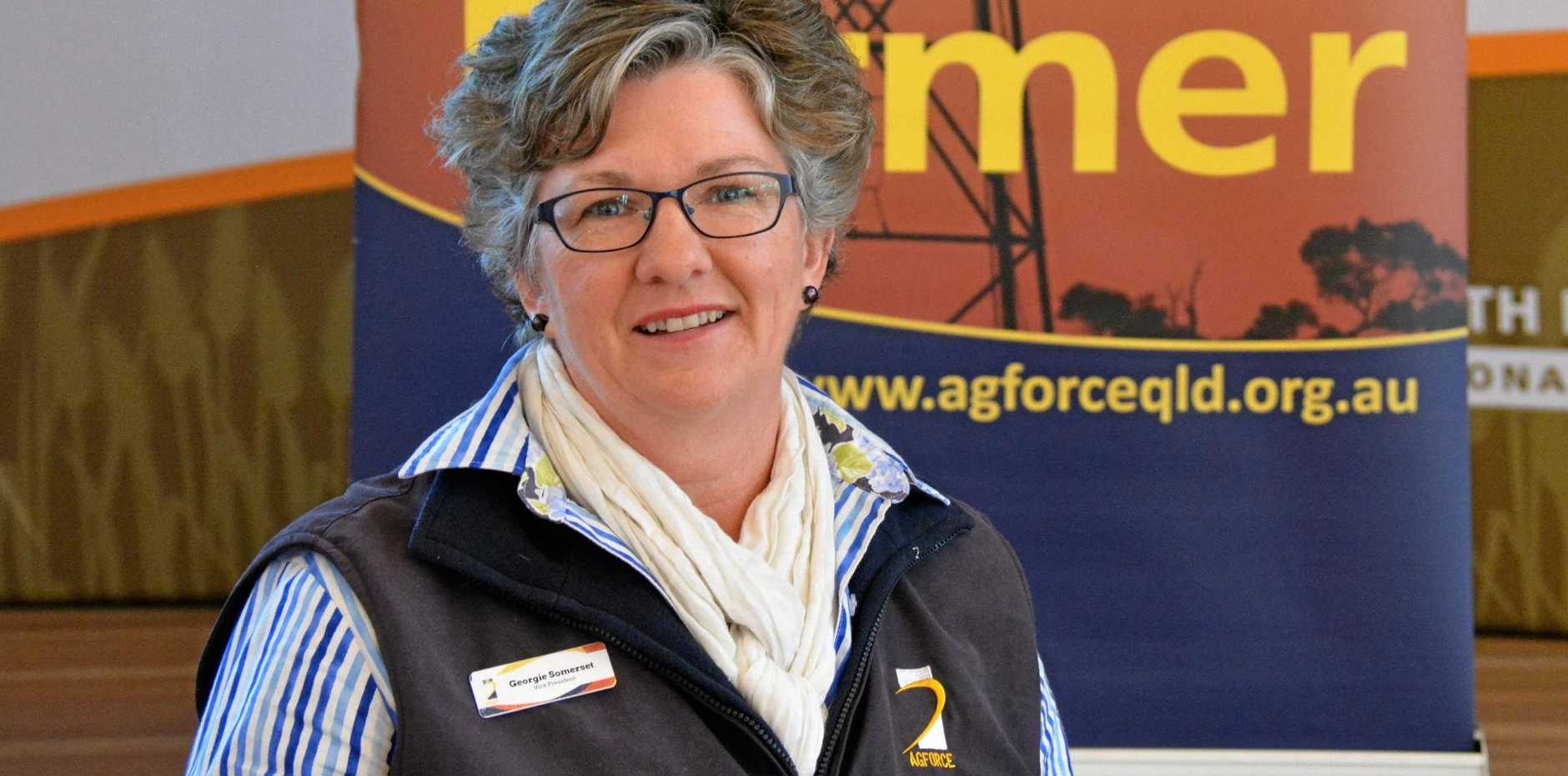 WELCOME: AgForce general president Georgie Somerset welcomes the commitment to improve the reliability of landline phone networks in the bush.
