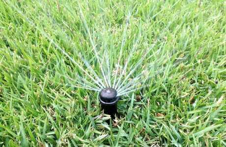 Sprinkler for water restriction story.