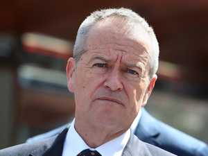 Shorten's splurge before 'Mediscare' campaign