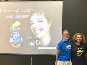 World Frog Day interactive workshop