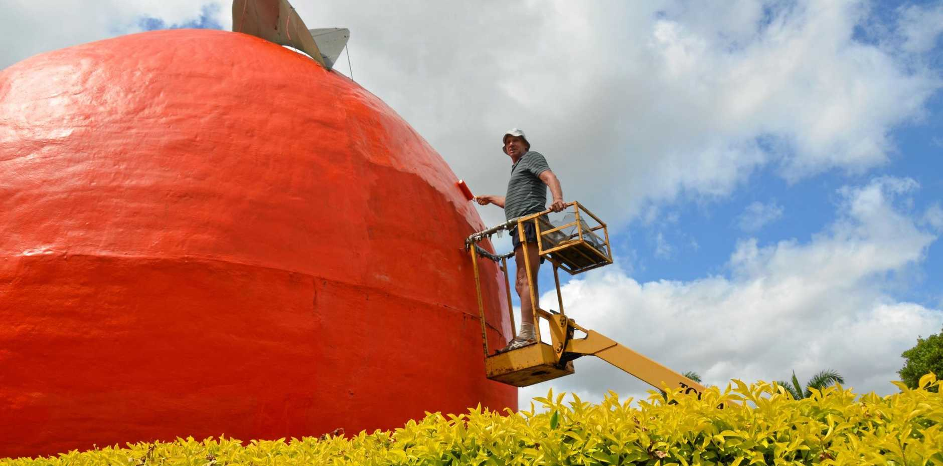 BIG BUY: Neil Richards working hard to have Gayndah's Big Orange looking fresh.
