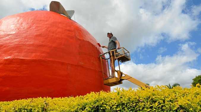 BIG BUY: Neil Richards working hard to have Gayndah's Big Orange looking fresh.