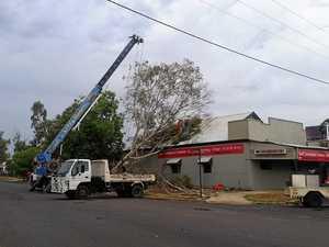 WATCH: Tree destroys building as storm hits region