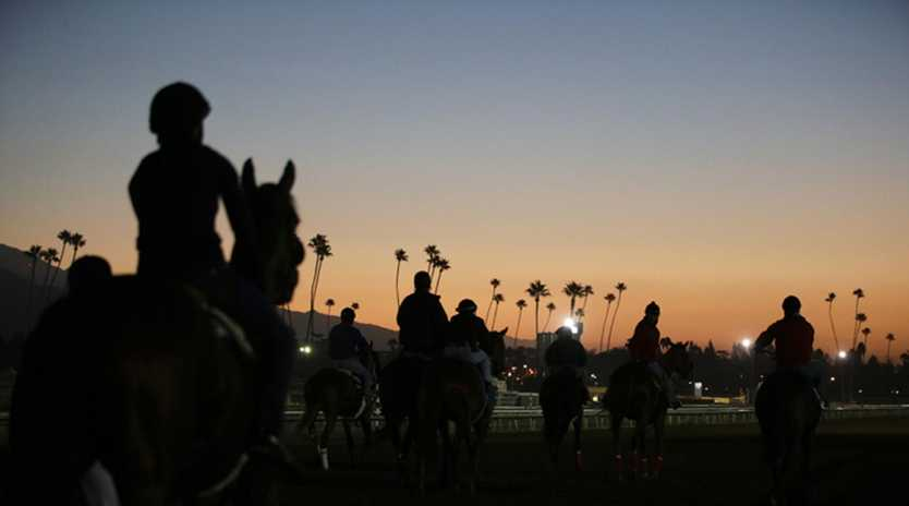 Horses was out for morning workouts at Santa Anita racetrack in California. (AP Photo/Jae C. Hong, File)