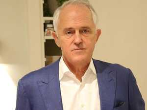 Turnbull fires up over government 'idiocy'