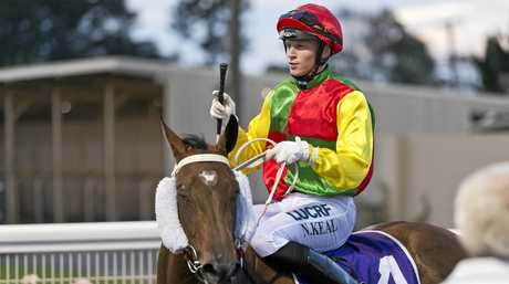 Nick Keal returns to the Clifford Park winners stall yesterday on King's Lady.