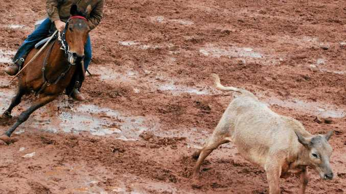CAMPDRAFT POSTPONED: Mundubbera campdraft committee deemed the grounds too wet for this weekend's event to go ahead.