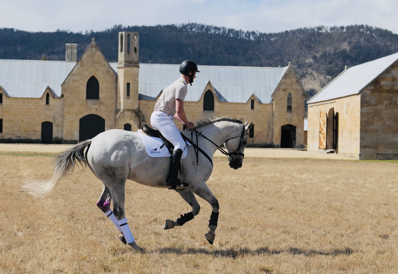 Polo is one of the many offerings for tourist at the Shene Estate in Tasmania.
