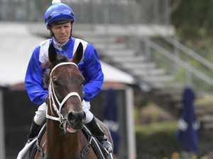 Winx to steal the show in bonanza Waller weekend