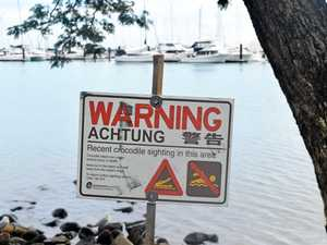 DO NOT SWIM: Crocodile sightings at local beach