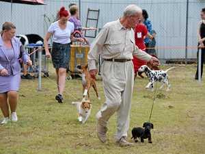 Murgon Show Dog Show