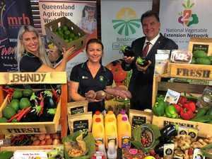 FUTURE BUNDABERG: Ag rise bucks the national trend