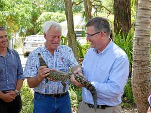 LNP check up on $300,000 croc investment