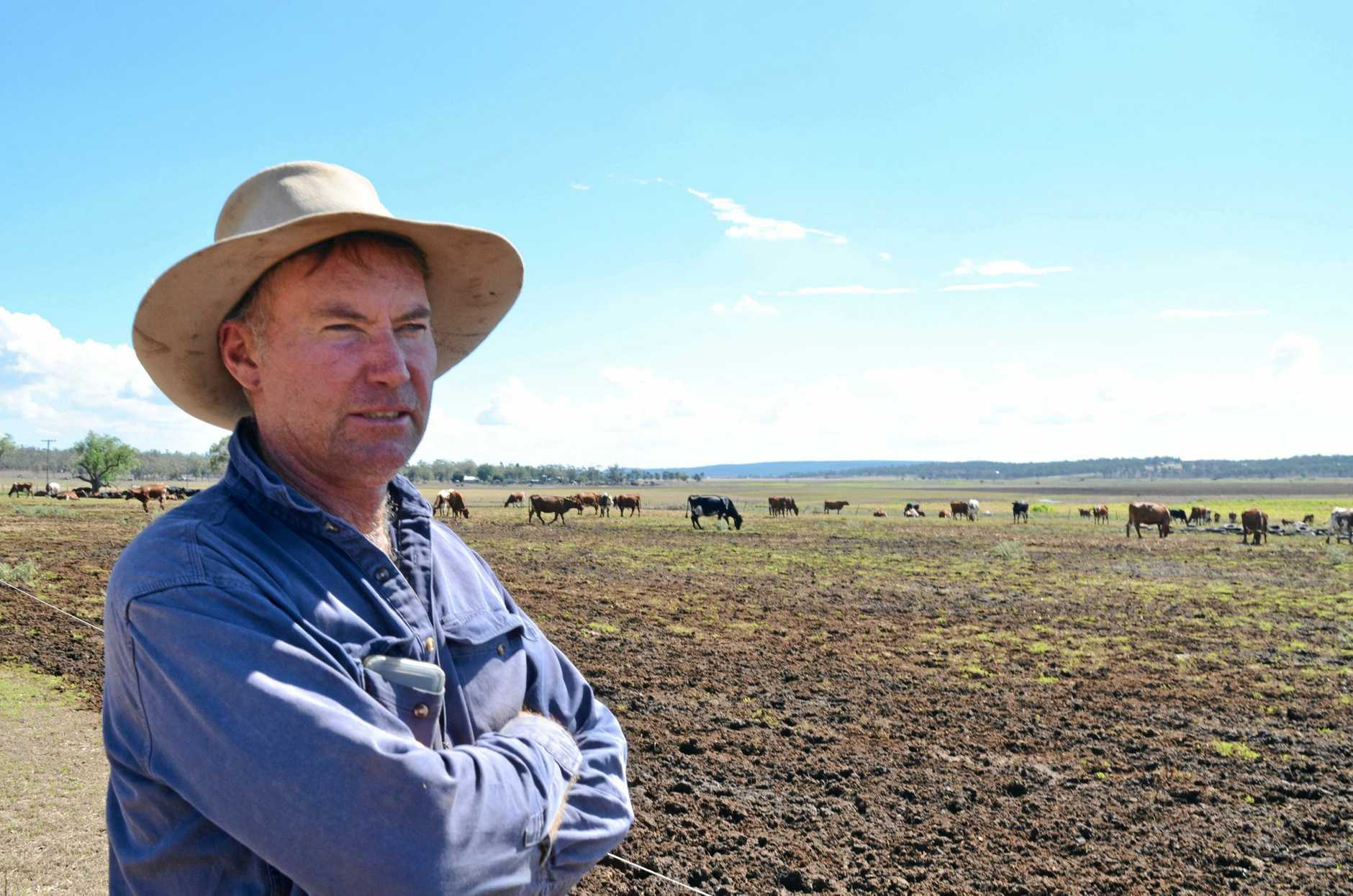 WET WEEKEND: Dairy farmer Rod Mclennan welcomed the rain but said a lot more is needed before he and his fellow farmers will start to fill positive.