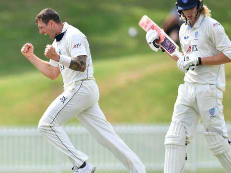 Victoria's James Pattinson celebrates taking the wicket of NSW batsman Jack Edwards during their Sheffield Shield clash last week. Picture: AAP