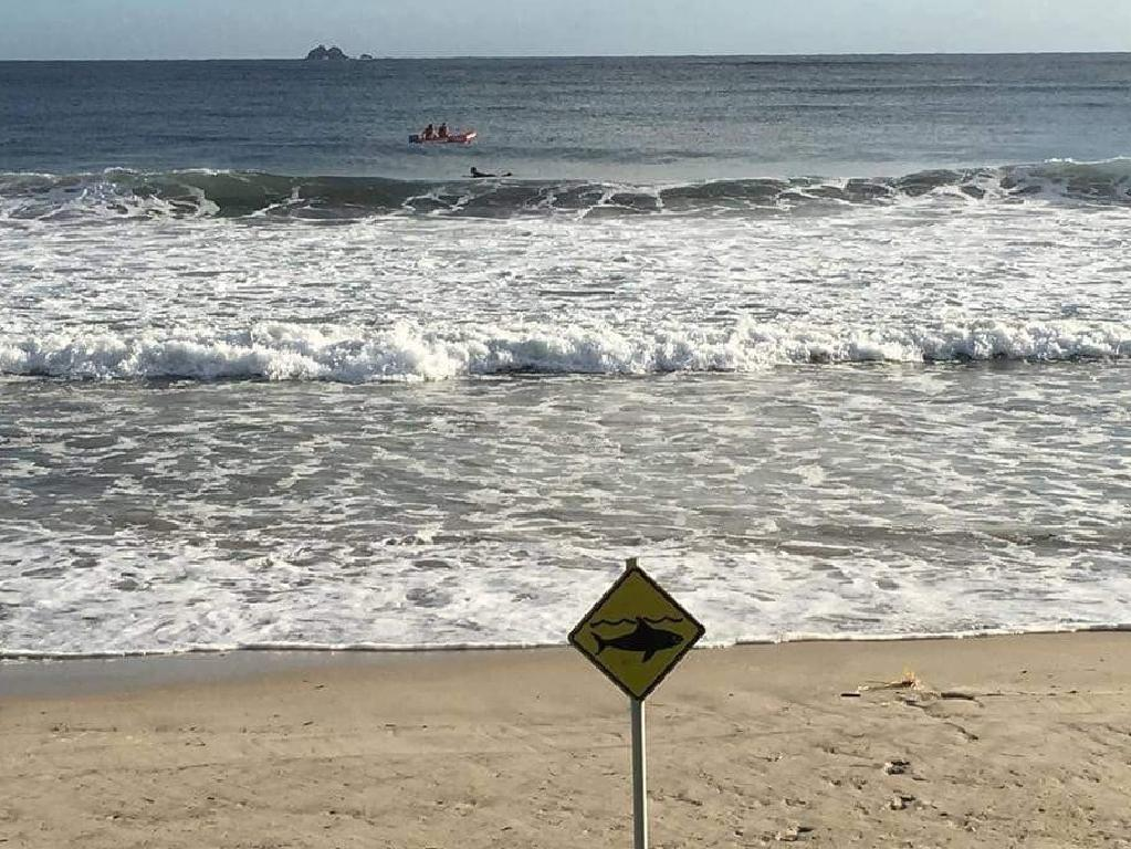 There is an urgent need to test shark-deterring devices to avoid deaths.