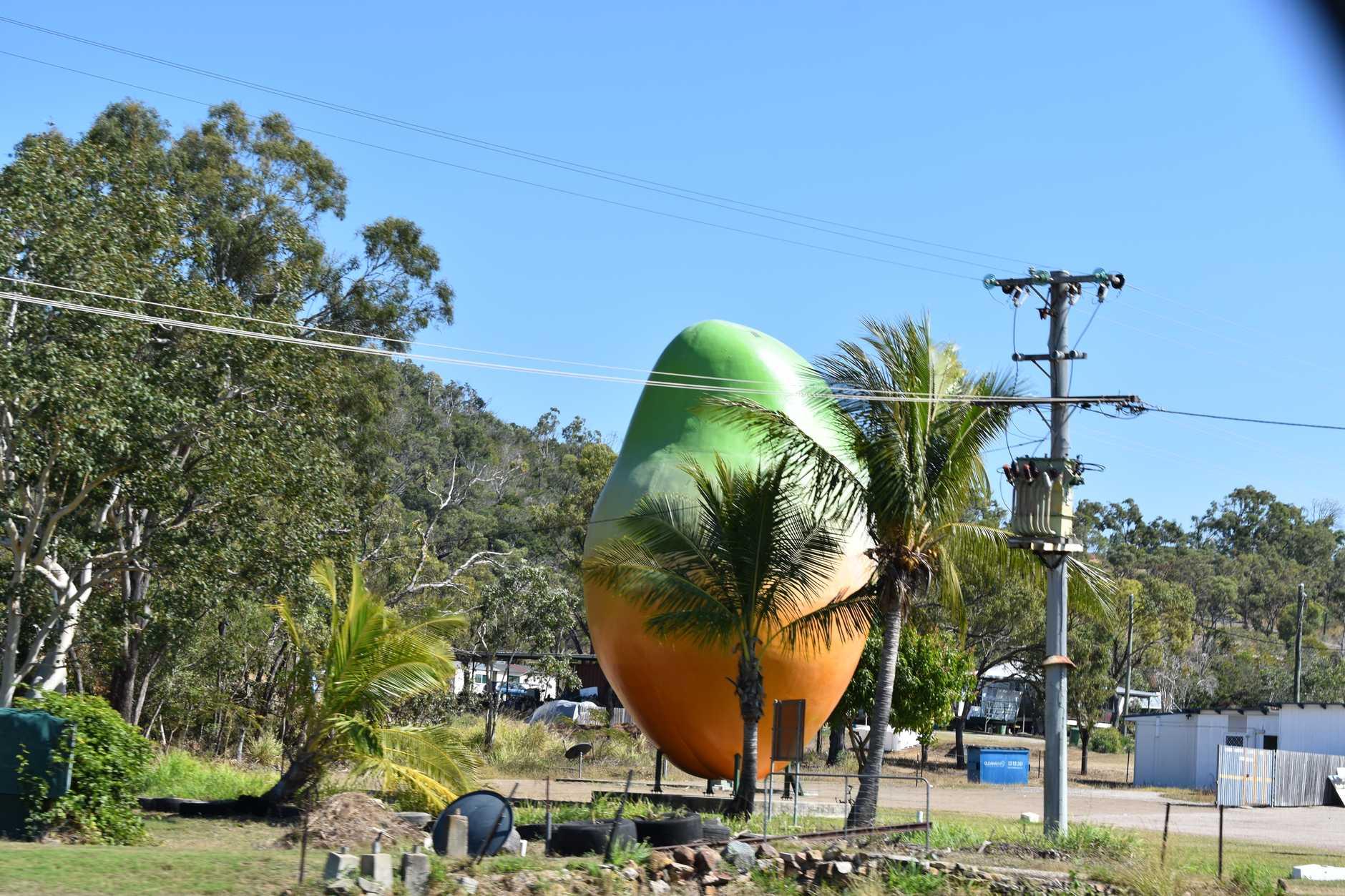 The giant mango.