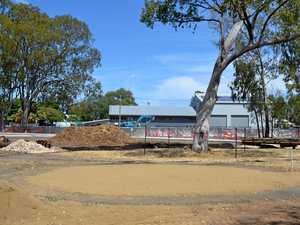 Botanic Parklands Update March 2019
