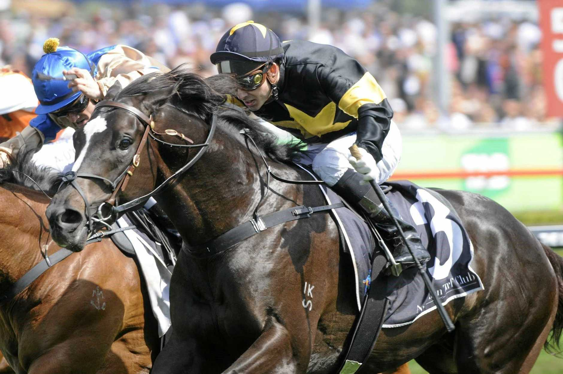 Lyndhurst Stud Farm sire Better Than Ready on his way to a track-record win at Randwick.