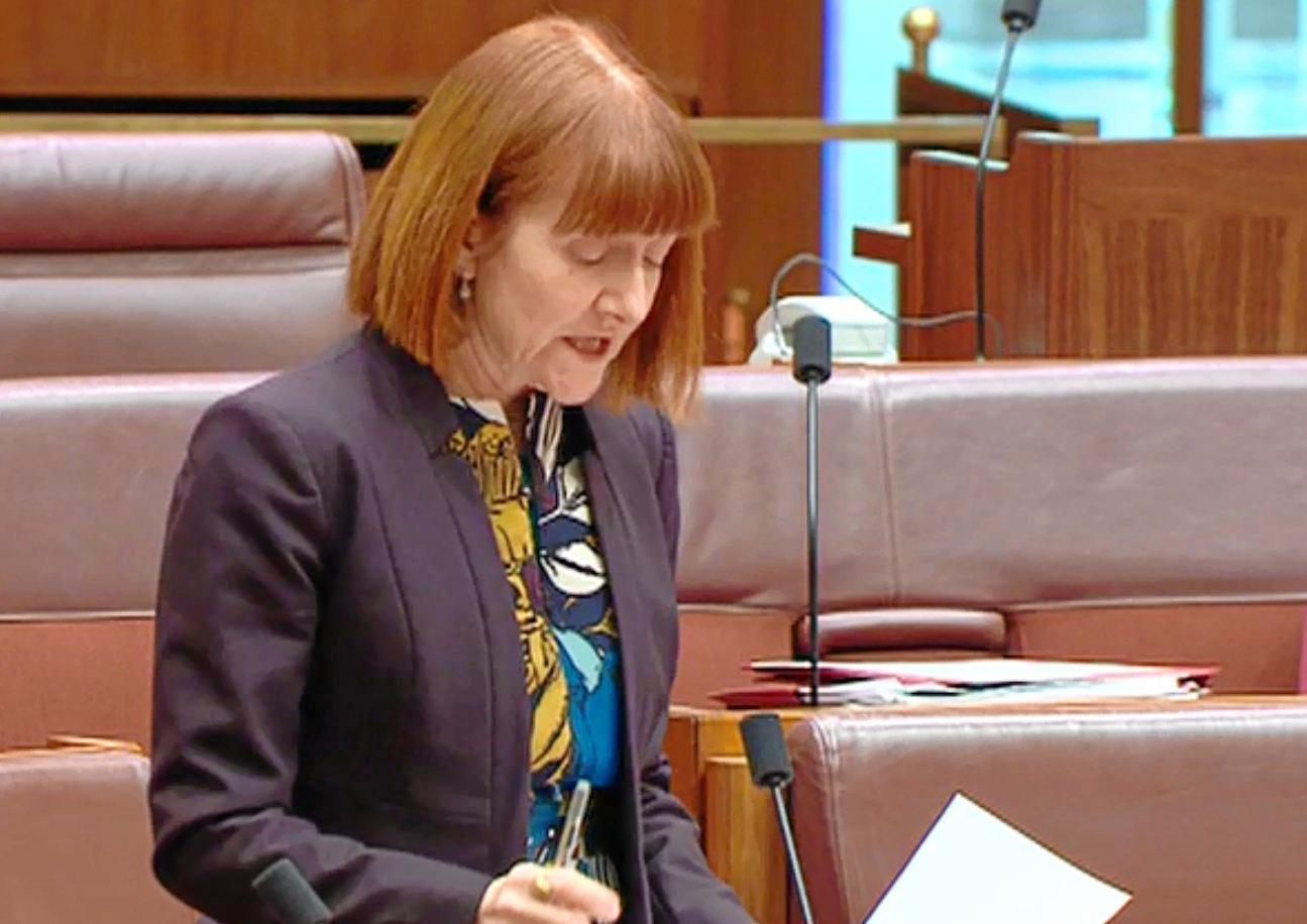 Greens Senator Rachel Siewert has been a vocal critic of the cashless card.