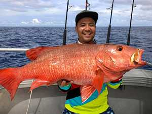 PHOTOS: Double Is angler nabs super rare monster fish