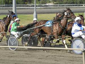 One family will have half the starters in trots at the show