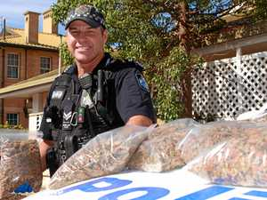DRUG BUST: $50K of illegal drugs hauled off Warwick streets