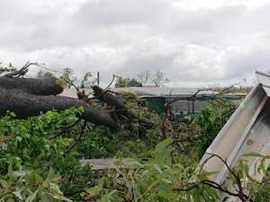 Cyclone Trevor clean up begins