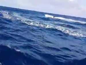 Runaway boat's wild ride
