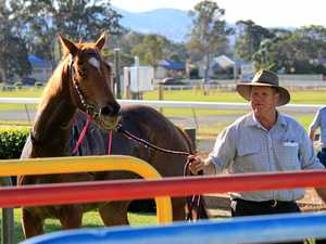 Trainer hopes for home-ground advantage as team assembled