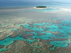 Mary-Burnett Farmers cry foul on 'unscientific' reef plans