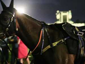 'Picture perfect' Winx all set for 32 in a row