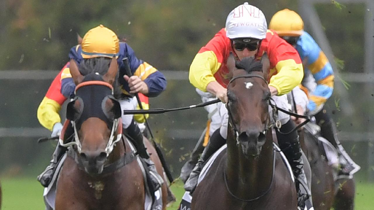 Cosmic Force (right) surged into the Golden Slipper frame after his runaway win in the Pago Pago Stakes. Picture: AAP