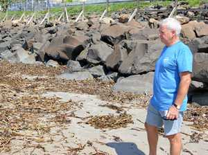 'Putrid' weed ruining beach could be 'disastrous': Resident