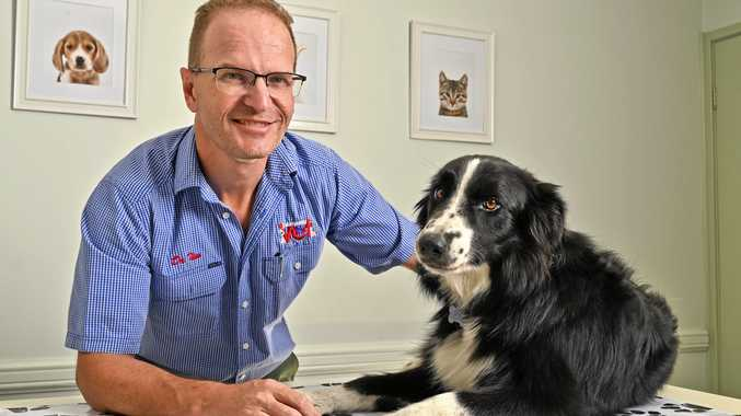 MAN'S BEST FRIEND: Yamanto Veterinary Surgery owner Dr Tim Rush alongside his border collie Jock. The clinic is celebrating 20 years in business.