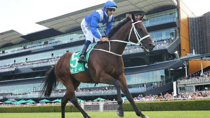 Winx will look to extend her win streak to 32 in the George Ryder Stakes. (Photo by Mark Evans/Getty Images)