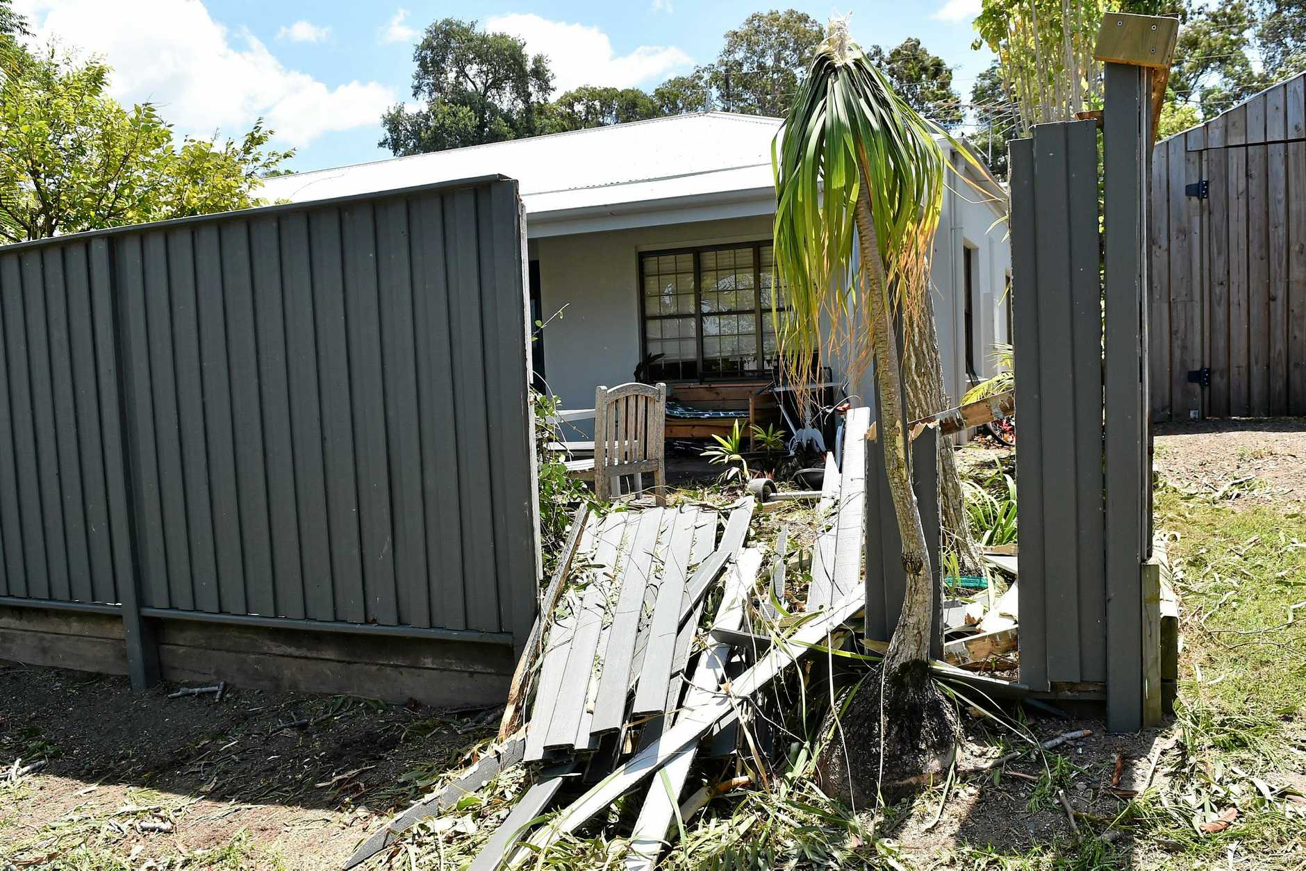 Mr Houk says he's been left responsible with the damage the gum tree caused to his property.