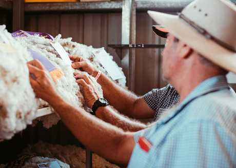 Residents getting a look at the wool on display in the shed at the Warwick Showgrounds.