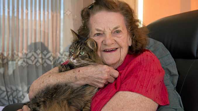 PLEA: Joan Dunlop's cat Sally needs a home.