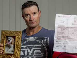 Dog rego notice left man devastated