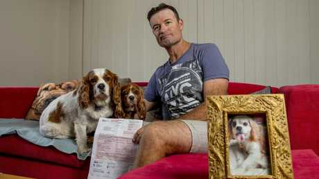 Wes Pope with his other dogs Hudson (white) and Maisie and the overdue notice from Council. Picture: Jerad Williams