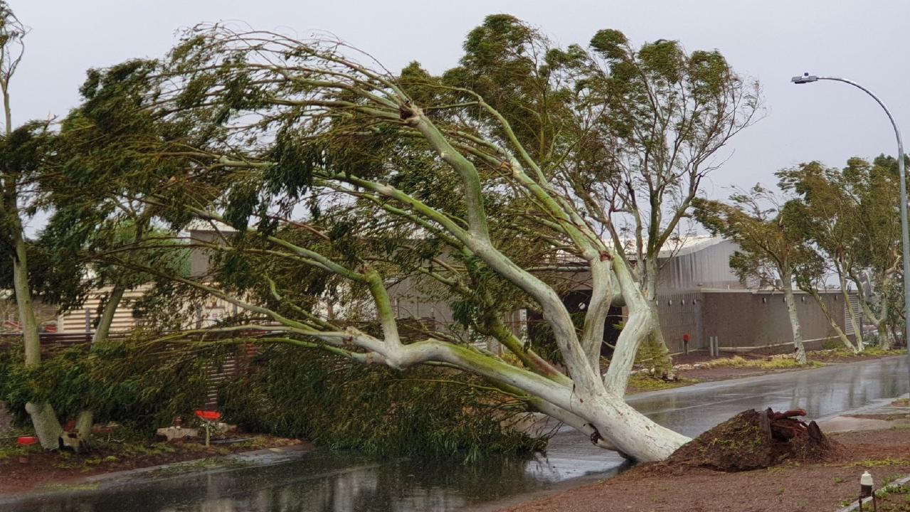 A tree blocks the road during high winds in Wickham, Pilbara, Western Australia. Picture: Twitter @WendyBirdOZ