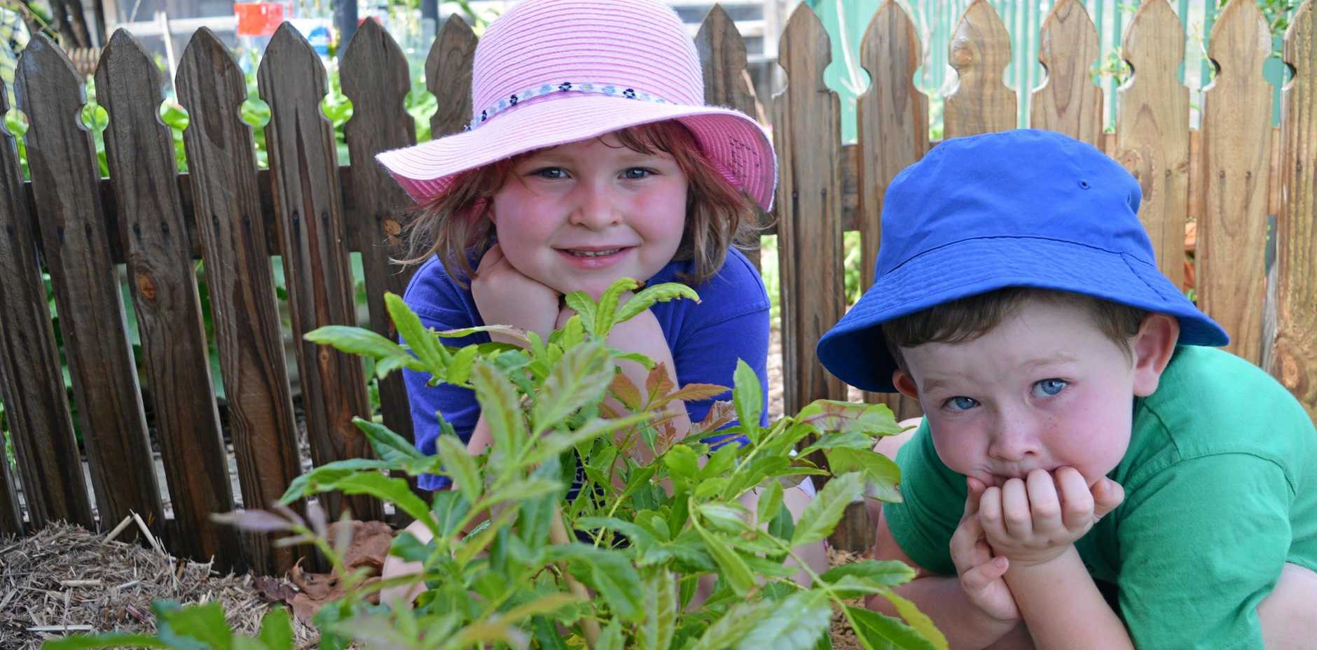 GROWING GOODIES: Bethany Kennedy and Lachlan Stover hang out in the bush tucker garden.