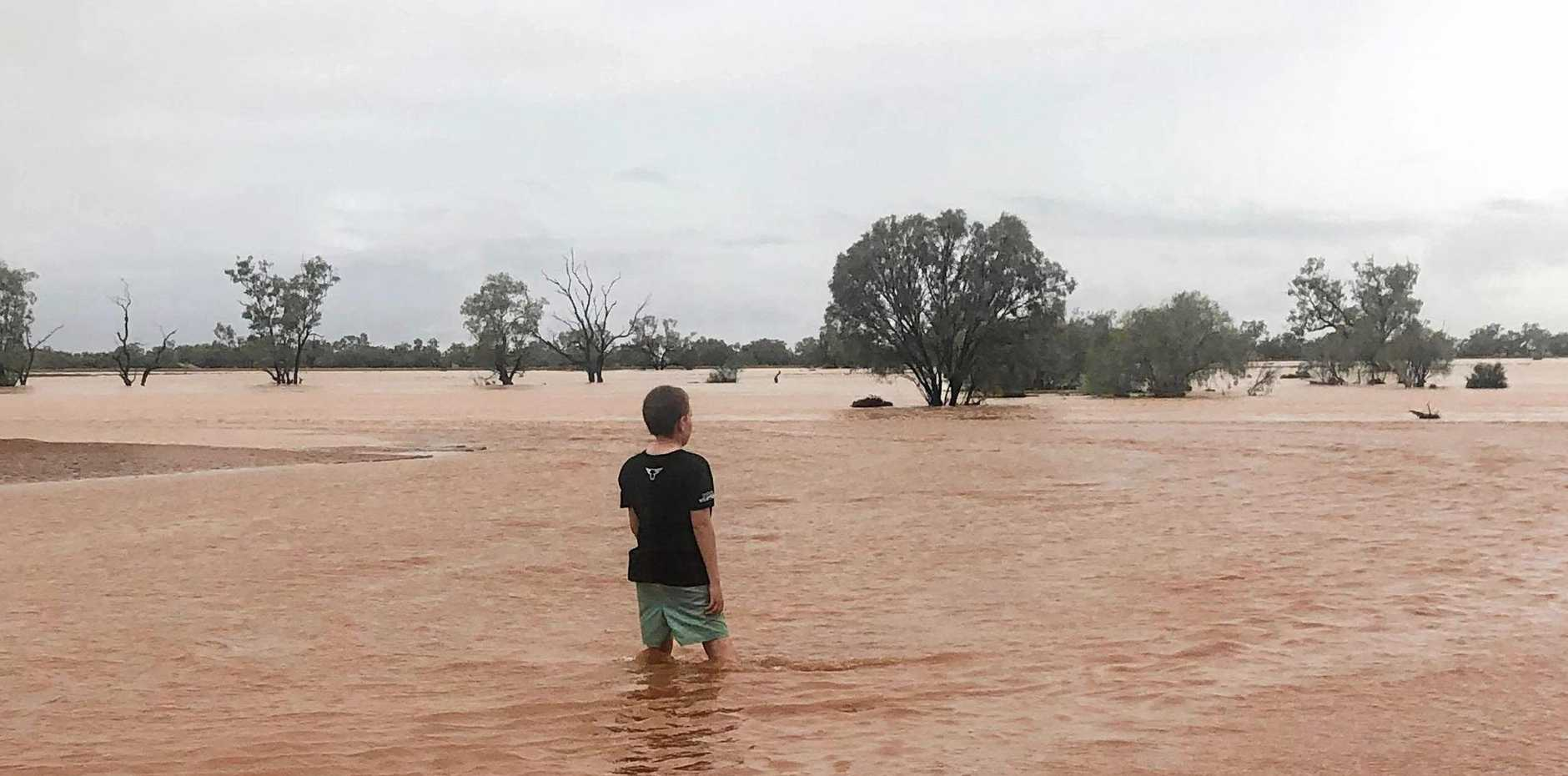INLAND SEA: Rory Miller, 11, can't believe his eyes after almost 300mm fell at Warbreccan Station near Stonehenge in Western Queensland. INSET: Ingrid Miller.