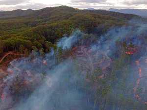 Forest burn ignites concerns among neighbours